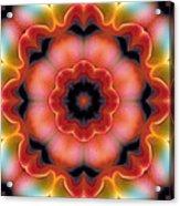 Mandala 91 Acrylic Print