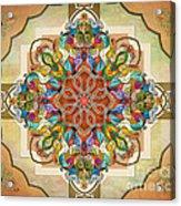 Mandala Birds Sp Acrylic Print by Bedros Awak