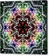 Mandala Cage Of Light Acrylic Print