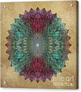 Mandala Crystal Acrylic Print by Filippo B
