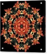 Mandala Daylily Acrylic Print