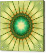 Mandala Of The Hope Acrylic Print