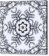 Mandala100 Acrylic Print