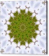 Mandala103 Acrylic Print