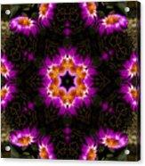Mandala73 Acrylic Print
