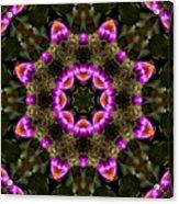 Mandala74 Acrylic Print