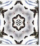 Mandala82 Acrylic Print