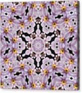 Mandala84 Acrylic Print