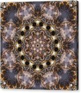 Mandala88 Acrylic Print