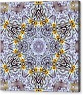 Mandala90 Acrylic Print