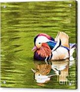 Mandarin Reflection Acrylic Print