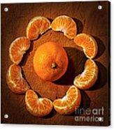 Mandarin - Vignette Acrylic Print by Kaye Menner