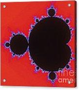 Mandelbrot Set Acrylic Print