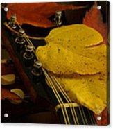 Mandolin Autumn 6 Acrylic Print