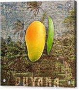 Mango Season Acrylic Print