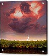 Mangrove Storm Acrylic Print