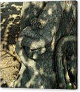 ...manhead Tree... Acrylic Print by Charles Struse Sr