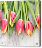 Many Spring Tulip Flowers On White Wood Table Acrylic Print