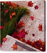 Maple Leaf Fall 3 - The Getty Acrylic Print