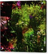 Maple Leaves And Daisys Acrylic Print