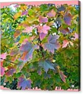 Maple Magnetism Painting Acrylic Print