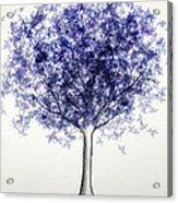Maple Tree 3 Acrylic Print
