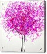 Maple Tree 4 Acrylic Print