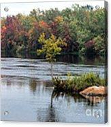 Maple Tree On A Rocky Island Acrylic Print