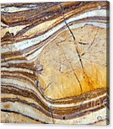 Marbled  Acrylic Print