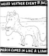 March Comes In Like A Liamb Acrylic Print