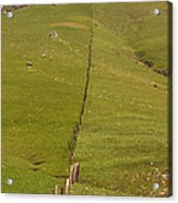 Marching Fence Acrylic Print