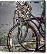 Mardi Gras Bicycle Acrylic Print by Brenda Bryant