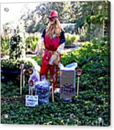 Mardi Gras Scarecrow At Bellingrath Gardens Acrylic Print