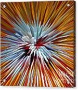 Mardi Gras Star Clown Acrylic Print