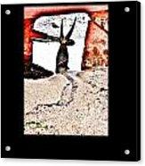 Mareas Baixas 2 Acrylic Print