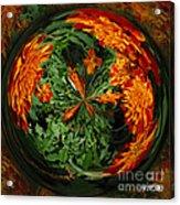 Marigold Orb II Acrylic Print