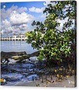 Marina At The Inlet Acrylic Print