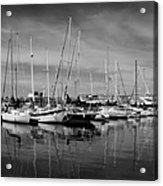 Marina Boats In Victoria British Columbia Black And White Acrylic Print