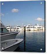 Marina Key West - Harbored Fun Acrylic Print