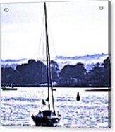 Marine Dream Acrylic Print