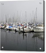 Marine Fog Acrylic Print