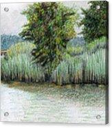 Mariner Point Park Acrylic Print