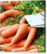 Market Carrots By Diana Sainz Acrylic Print