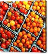 Market Fresh Tomatos Acrylic Print