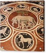 Marple Floor - Cathedral Siena Acrylic Print