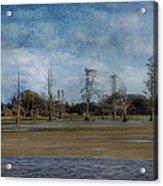 Marsh Lands  Acrylic Print