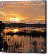 Marsh Sunrise 2 Acrylic Print