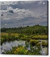 Marsh Under The Clouds Acrylic Print