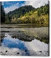 Marshall Pond In Autum Acrylic Print