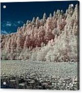 Marshall Pond In Infrared Acrylic Print